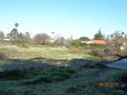 Upper Penitencia Creek perc ponds