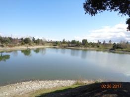 Camden perc ponds