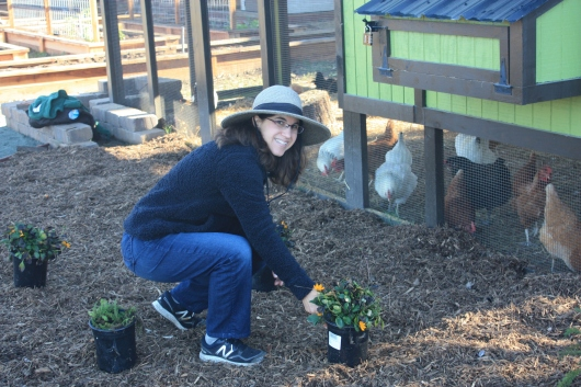 Landscape Designer for Project TERRA Stephanie Morris, figuring out plant placement next to the chicken run.