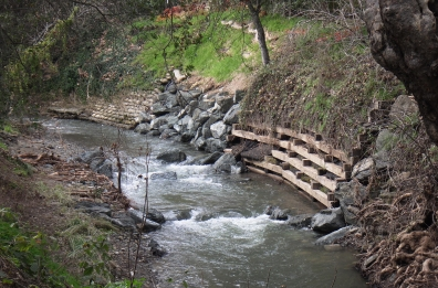 AFTER: repaired cribwall reinforcing creek bank along Saratoga Creek