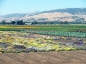 Recycled water is important to agriculture's future
