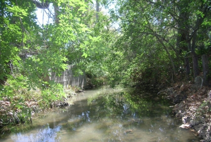 Stevens Creek before habitat improvement.