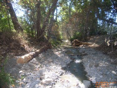 Stevens creek after installing gravel for habitat improvement.