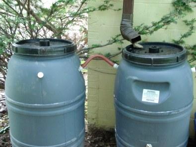 rain barrels - green house